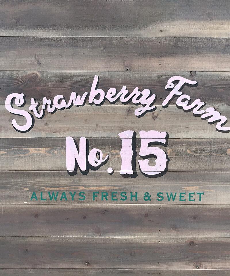 strawberry farm No.15